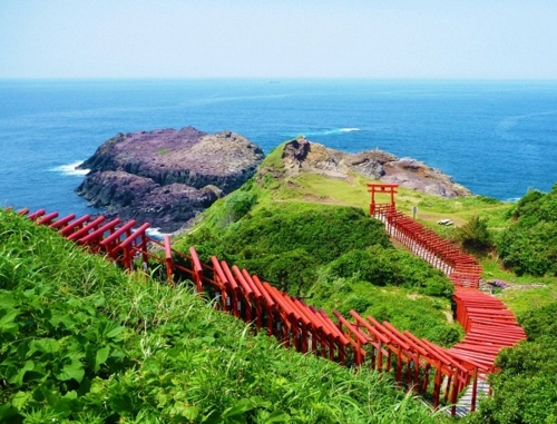 Yamaguchi Superb view The enjoyment Bus (Motonosumi Inari Shrine and Tsunoshima Course)