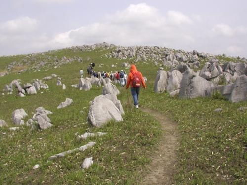 秋吉台石灰岩地形行走