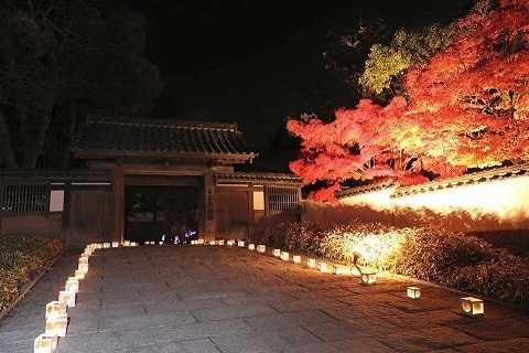 Castle Town Chofu, autumn of the Color
