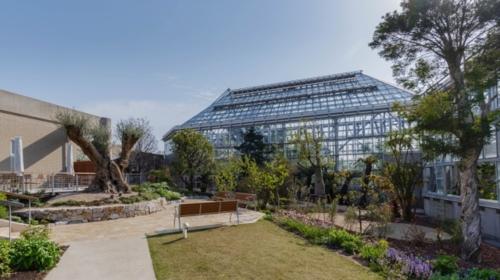 도키와 뮤지엄(도키와 공원 내)(초록과 꽃과 조각의 박물관)