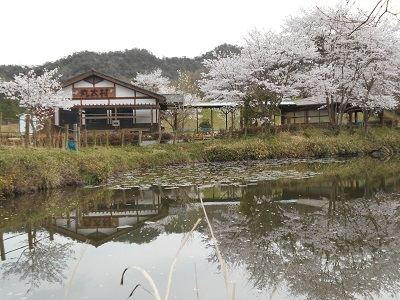 森林体验交流设施丸太村