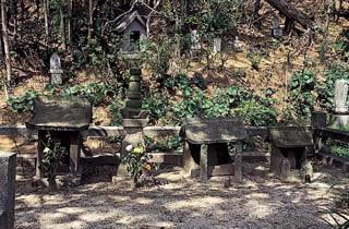 신쿄오지 (시미즈 무네하루 주종의 공양탑)