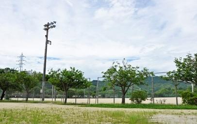 Light Sports Park