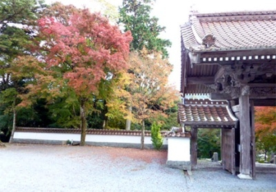 Sainen temple / fall foliage