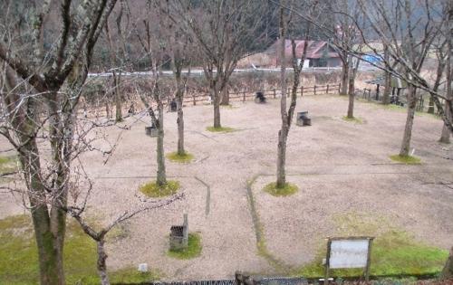 高濑太阳·体育运动乐园露营地