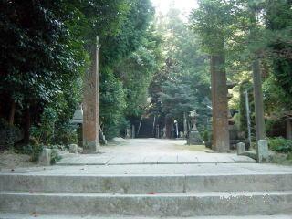Takamatsu Hachimangu Forest