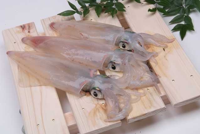 1. Squid Dishes