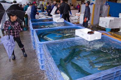 1. Shimonoseki Fish Festival