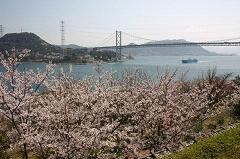 4. 히노야마 공원
