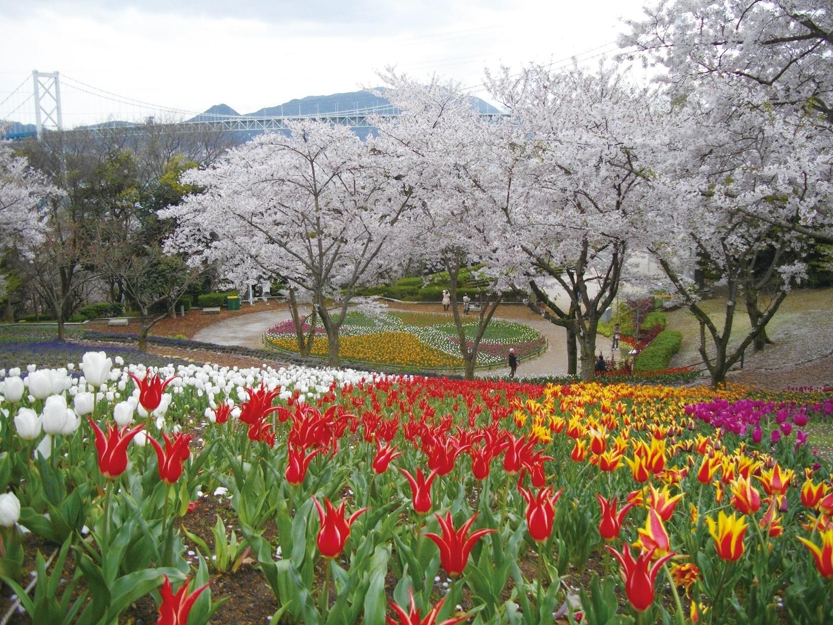 2. 히노야마 공원