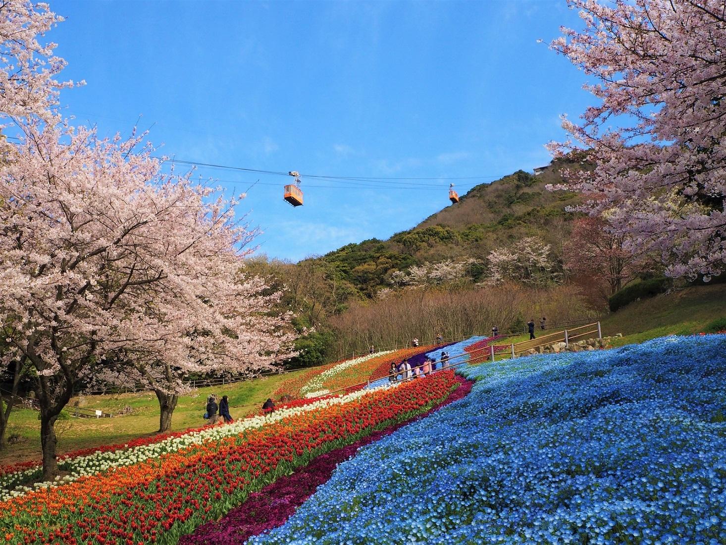 3. 히노야마 공원