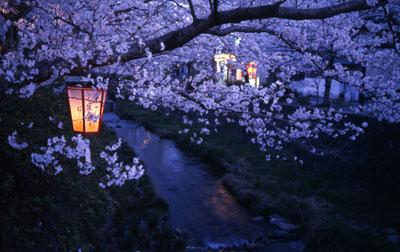 3. แม่น้ำอิจิโนะซากะคาวะ