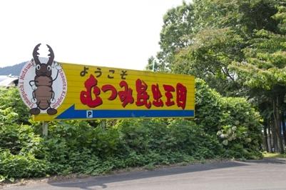 1. Mutsumi Beatles Kingdom
