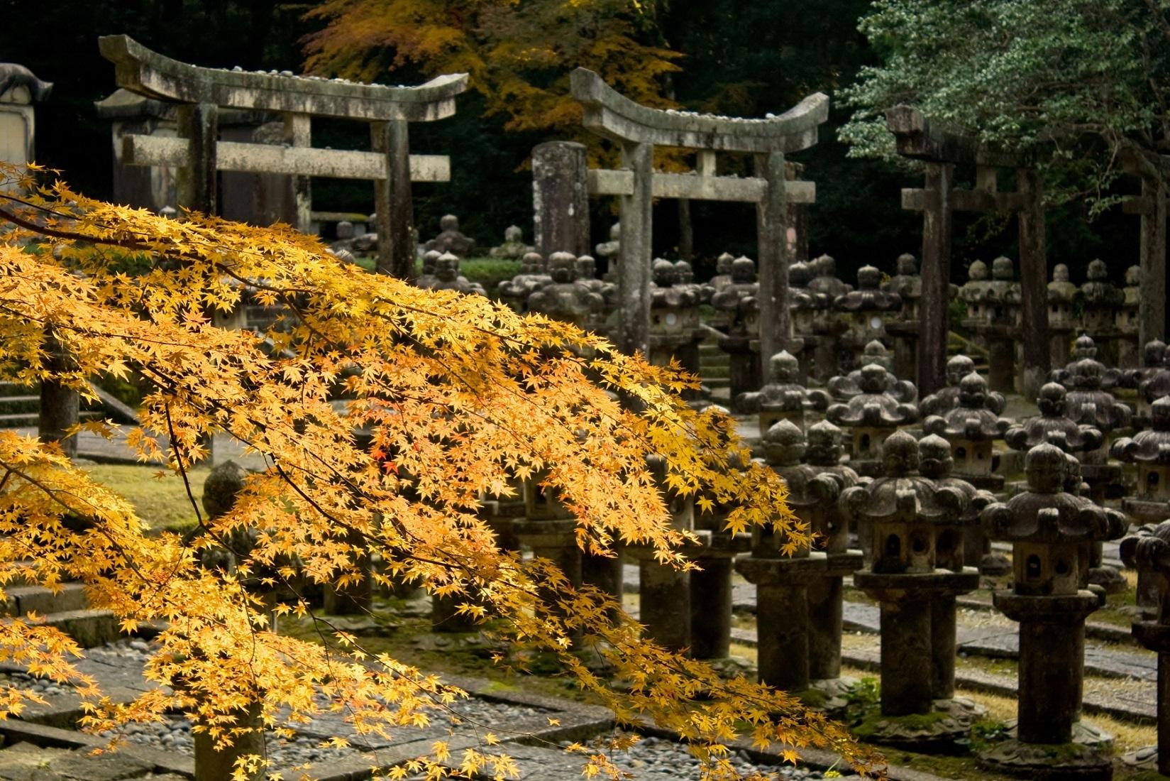 8. Tokoji Temple