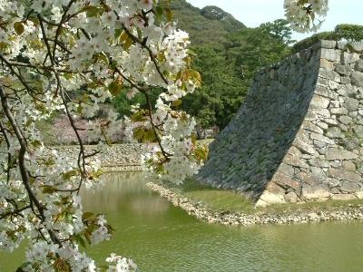 4. 하기 성터 시즈키 공원