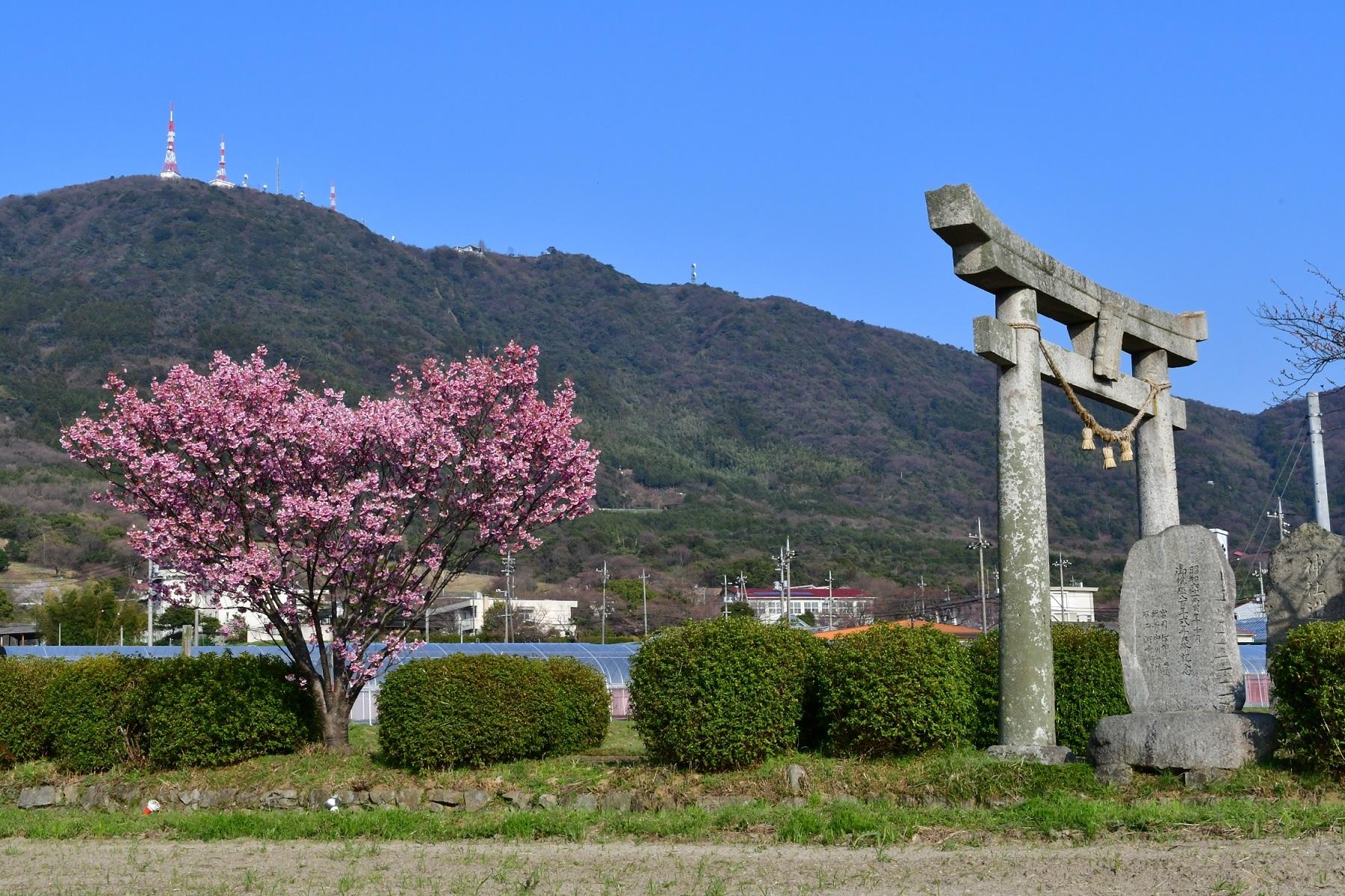 1. Kasuga Shrine