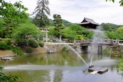 1. Kikko Park