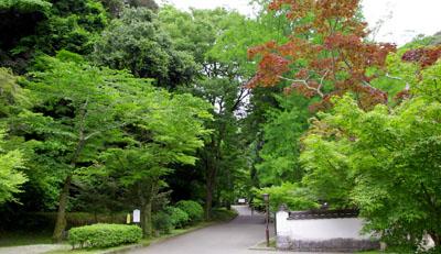 1. 모미지다니 공원