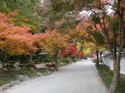 3. 모미지다니 공원