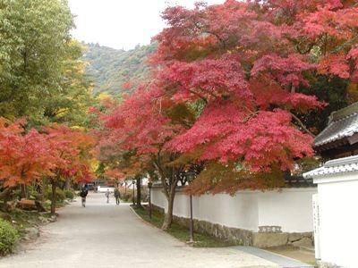 2. 모미지다니 공원