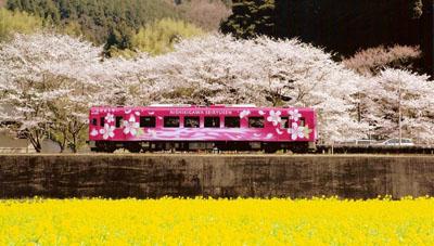 3. 니시키가와세류센 (니시키가와 철도)