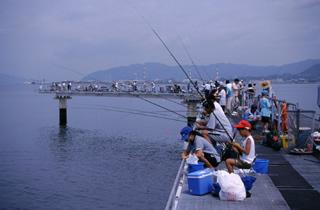 1. Fishing Park Hikari