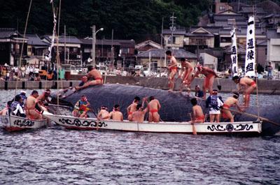 1. Kayoi Whale Festival
