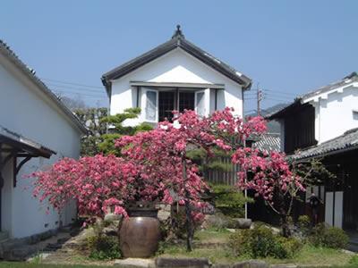 1. 商家博物馆室屋之园(小田家的生活用品、商家资料、町家)