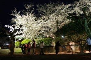 5. 슈난 시 도쿠야마 동물원