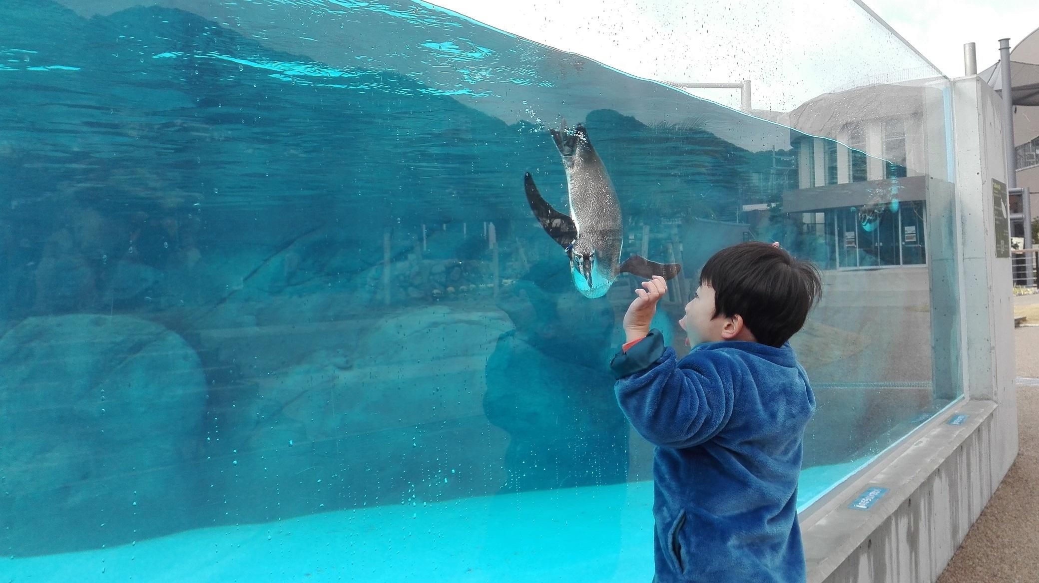 2. 周南市德山動物園