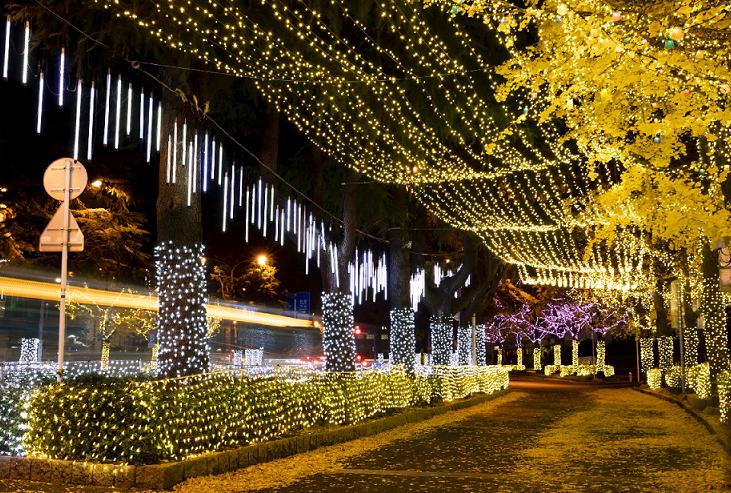 2. Shunan Winter Tree Festival