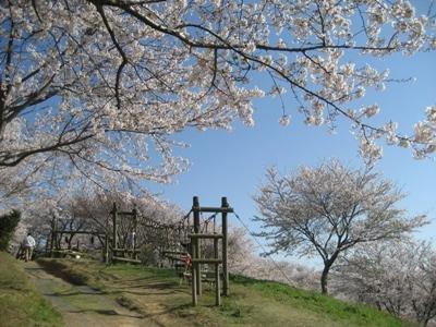 4. 龍王山公園