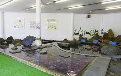 3. Nagisa Aquarium