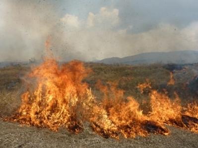 1. Akiyoshidai Plateau Mountain Burning