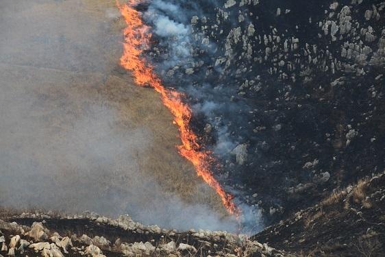 3. Akiyoshidai Plateau Mountain Burning
