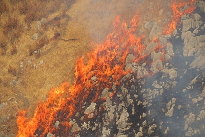 2. Akiyoshidai Plateau Mountain Burning
